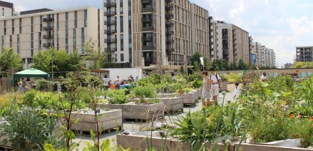 garden city2