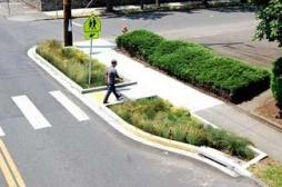 green infrastructure1