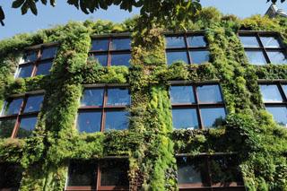 green infrastructure3